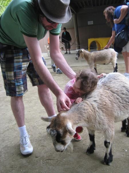 Love a goat.
