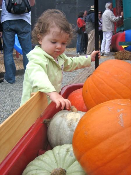 Izzy and the wagon full of pumpkins