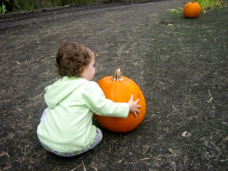 Izzy and the great pumpkin